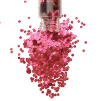 Chunky Biodegradable Eco Glitter - Ruby Red 20g by The Glitter Tribe